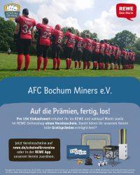 Scheine für die Bochum Miners